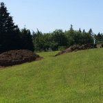 Septic system project